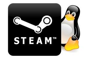 Steam Fedora 20